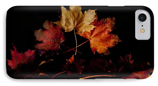 IPhone Case featuring the photograph Autumn Leaves by Beverly Cash
