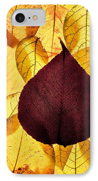 Autumn Leaves IPhone Case by Bob Decker