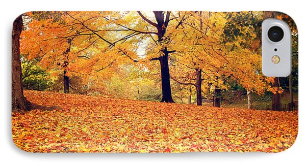 Autumn Leaves - Central Park - New York City Phone Case by Vivienne Gucwa