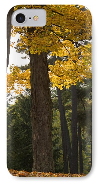 IPhone Case featuring the photograph Autumn Leaves by Darleen Stry