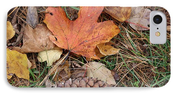 IPhone Case featuring the photograph Autumn Leaves by Donna  Smith