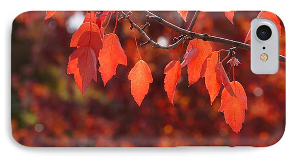 IPhone Case featuring the photograph Autumn Leaves In Medford by Mick Anderson