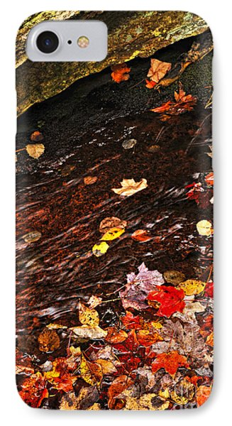 Autumn Leaves In River Phone Case by Elena Elisseeva