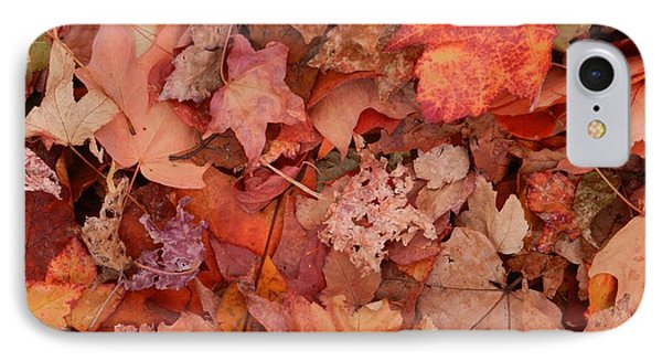 IPhone Case featuring the photograph Autumn Leaves by Karen Molenaar Terrell