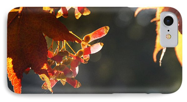 IPhone Case featuring the photograph Autumn Maple by Mick Anderson