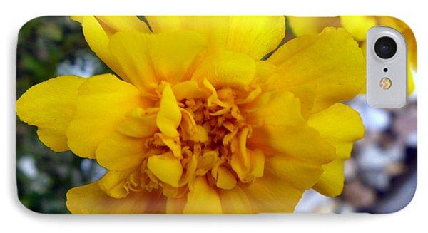 Autumn Marigold 1 Phone Case by Alys Caviness-Gober