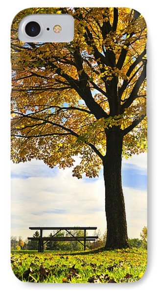 Autumn Park Phone Case by Elena Elisseeva
