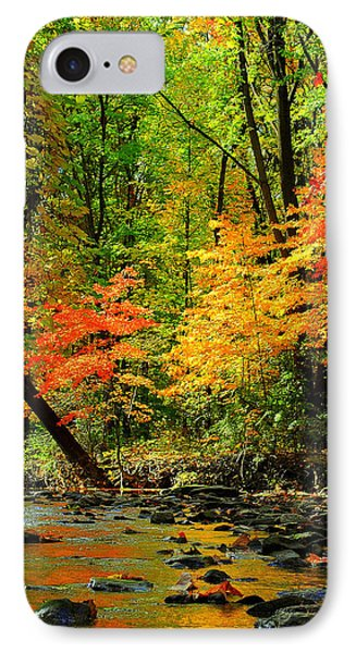 Autumn Reflects Phone Case by Frozen in Time Fine Art Photography
