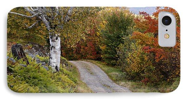 Autumn Road - D005840 Phone Case by Daniel Dempster