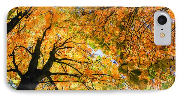 Autumn Sky Phone Case by Hannes Cmarits