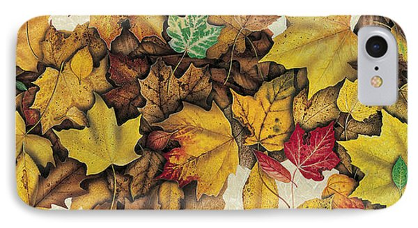 Autumn Splendor Phone Case by JQ Licensing