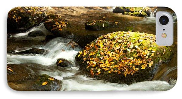 Autumn Stream Phone Case by Lena Auxier
