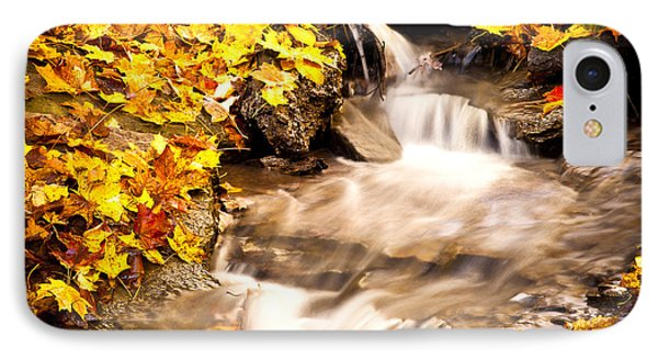 Autumn Stream No 1 Phone Case by Kamil Swiatek