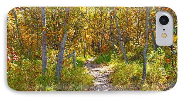 Autumn Trail IPhone Case by Jim Sauchyn