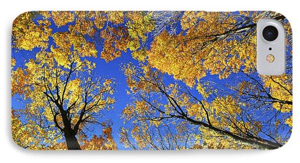 Autumn Treetops Phone Case by Elena Elisseeva