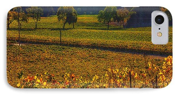 Autumn Vineyards Phone Case by Garry Gay