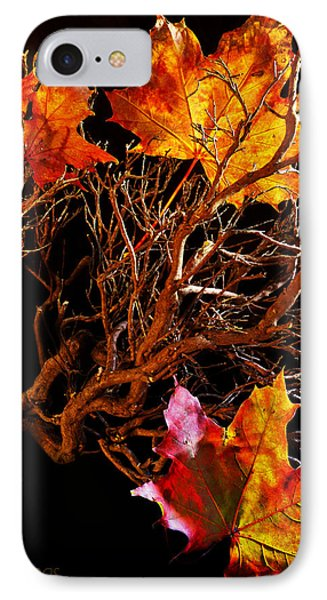 IPhone Case featuring the photograph Autumnal Feelings by Beverly Cash