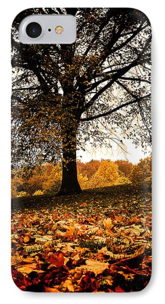 Autumnal Park IPhone Case by Lenny Carter