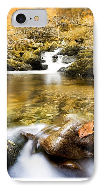 Autumnal Stream Phone Case by Mal Bray