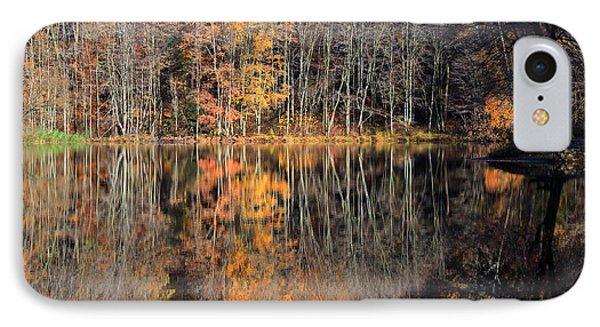 Autumns Art Phone Case by Karol Livote