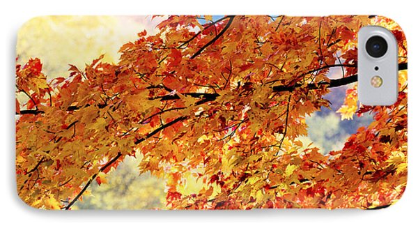 Autumns Gold Great Smoky Mountains Phone Case by Rich Franco