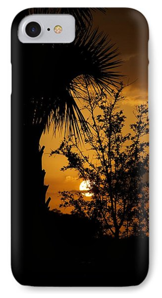 Ave Maria Phone Case by Joseph Yarbrough