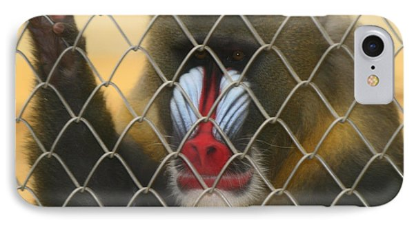 IPhone Case featuring the photograph Baboon Behind Bars by Kym Backland