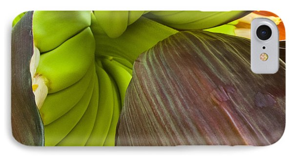Baby Bananas Phone Case by Heiko Koehrer-Wagner
