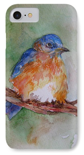 Baby Blue Bird IPhone Case by Gloria Turner