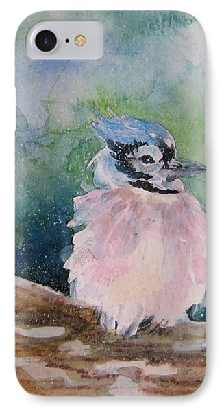 Baby Blue Jay IPhone Case by Gloria Turner