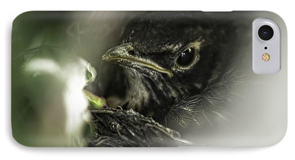 IPhone Case featuring the photograph Baby Robin by Tom Gort