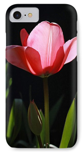 Back Lite Tulip IPhone Case by Tyra  OBryant