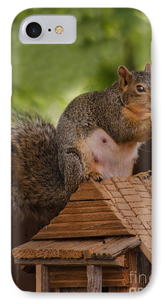 Back Yard Pet Phone Case by Robert Bales