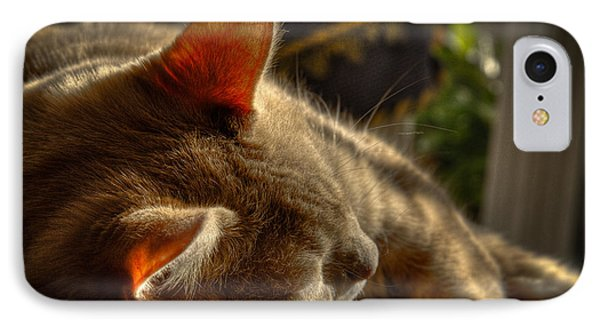 Backlit Ears Phone Case by David Patterson