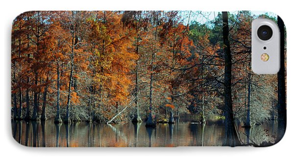 Bald Cypress In Autumn IPhone Case