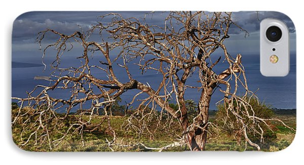 Bare Tree In Hana Maui IPhone Case