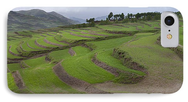 Barley Crop Grown On Terraced Hillsides Phone Case by Phil Borges