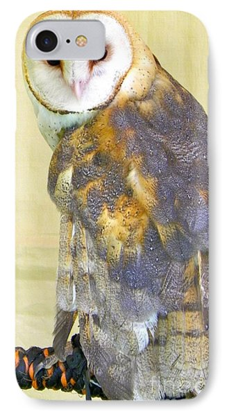 Barn Owl IPhone Case by KD Johnson