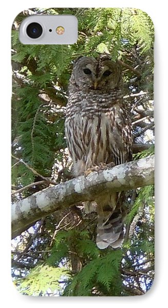 IPhone Case featuring the photograph Barred Owl  by Francine Frank