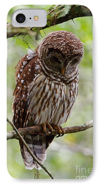 Barred Owl Phone Case by Joe Elliott