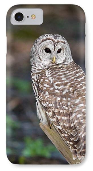 IPhone Case featuring the photograph Barred Owl by Les Palenik