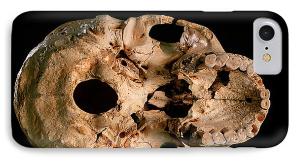 Base Of Skull 5, Sima De Los Huesos IPhone Case