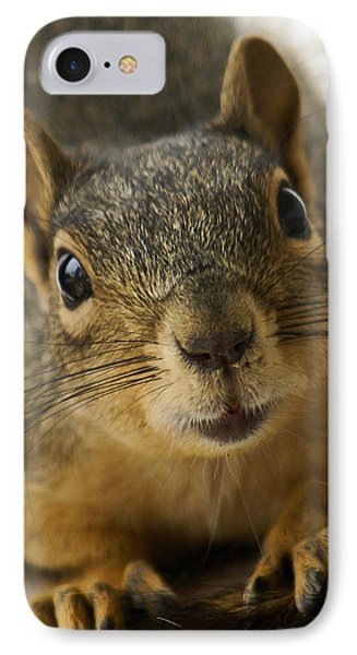 Be Friends IPhone Case by Colleen Coccia