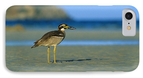 Beach Stone-curlew Phone Case by Bruce J Robinson