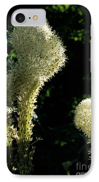 IPhone Case featuring the photograph Bear-grass I by Sharon Elliott