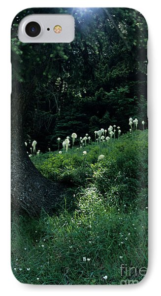 IPhone Case featuring the photograph Bear-grass Ridge II by Sharon Elliott