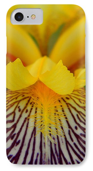 Bearded Iris IPhone Case by Mark J Seefeldt