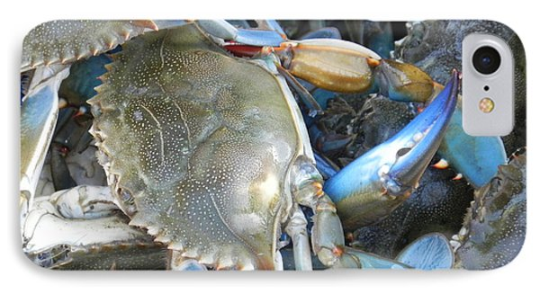 IPhone Case featuring the photograph Beaufort Blue Crabs by Patricia Greer