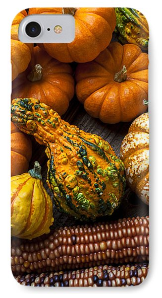 Beautiful Autumn IPhone Case by Garry Gay