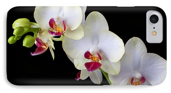 Beautiful White Orchids Phone Case by Garry Gay